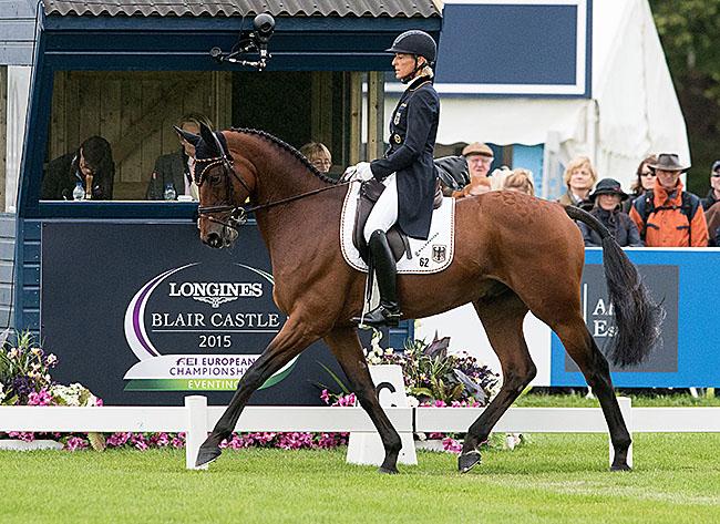 Horseware Hale Bob (Helikon xx – Goldige x Noble Champion), bred by Dr. Rolf Lück, ridden by Ingrid Klimke (GER)